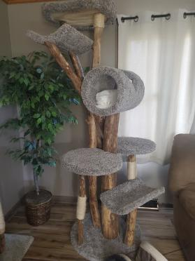 Extra Tall Cat Tree